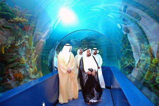 Unterwegs mit dem Scheich von Sharjah durch ein Aquarium