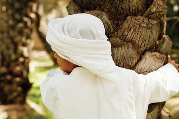 Abu Dhabi: Oase Al Ain