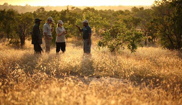 Wallking-Safari durch das Selous Wildreservat