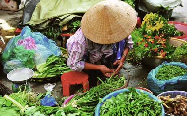 Vietnam: Auf den Märkten gibt es alles frisch