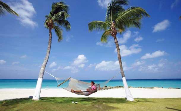 Das ist Karibik pur: Palmen, Strand und das weite Meer