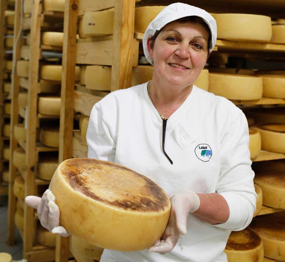 Die Milk-Cheesebar-Latus im Hinterland von Istrien ist ein Geheimtipp für verwöhnte Käsegaumen (Foto: A.R.T.)