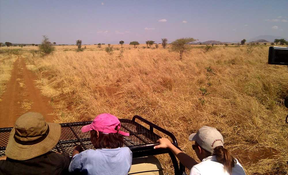 Safari im Kidepo Valley National Park in Uganda: Für Wildtierbeobachter ein Paradies (Foto: Keitsist, Wiki Commons)