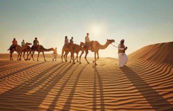Abu Dhabi: Wüstenausritt auf dem Kamel