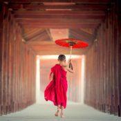 Folge den Mönchen und Du findest das Glück (Foto: Sasin Tipchai, Pixabay)