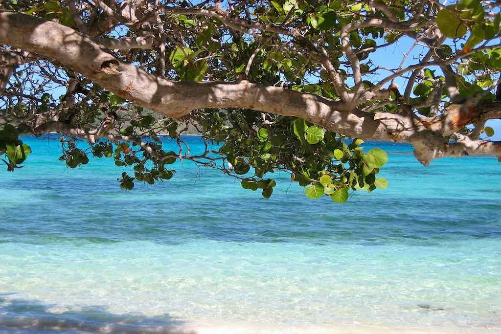 Kreuzfahrt in die Karibik: Einsame Traumstrände mit idyllischen Buchten auf Barbados