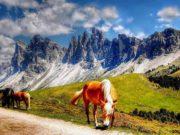 Jetzt ist auch die beliebte Urlaubsregion Südtirol zum Coronavirus-Risikogebiet erklärt worden (Foto: Kordula Vahle,Pixabay)