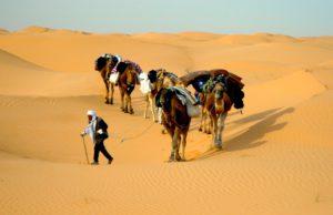 Das Coronavirus hat den Tourismus in Tunesien schwer getroffen (Foto: H. Bieser, Pixabay)
