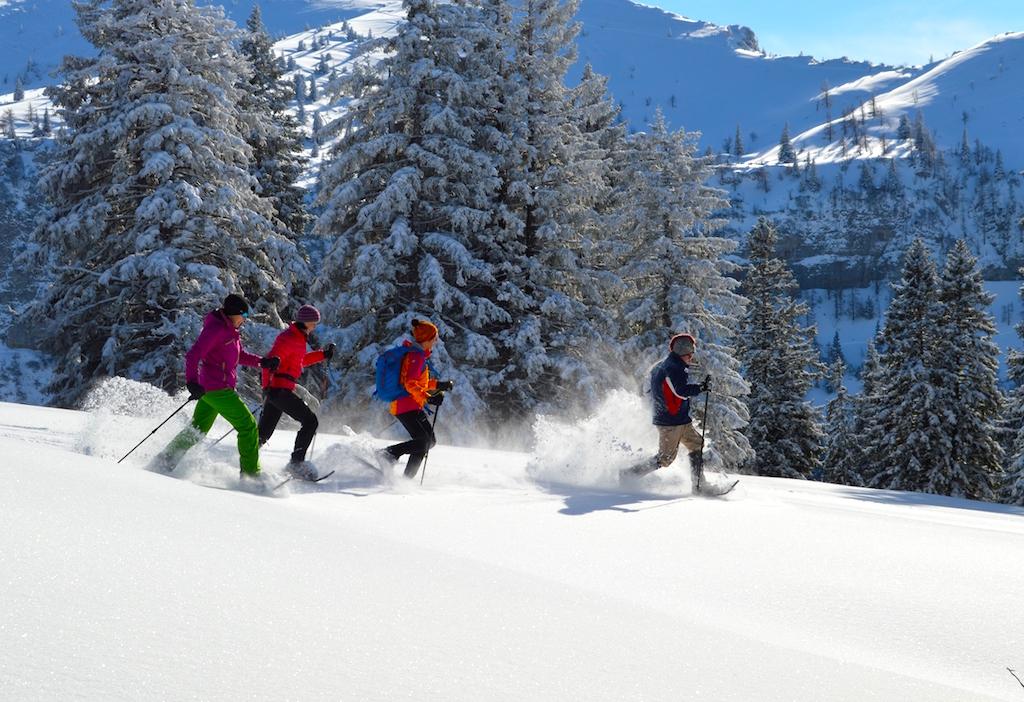 Waldness-Winterwald im Almta: Schneeschuhwandern am Kasberg (Foto: TV Traunsee-Almtal/Nadine Bammer)