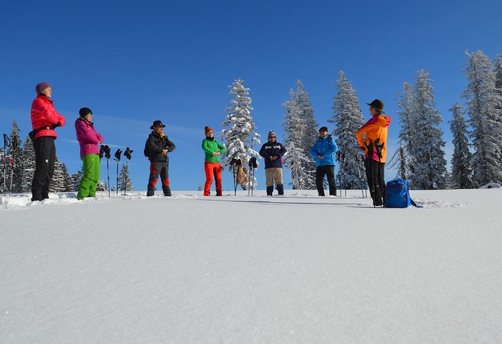 Waldness im Winter: Das Almtal bietet ein gesunde Alternative als perfektes Geschenk: Mit Wyda, dem Yoga der alten Kelten auf dem Kasberg (Foto: TV Traunsee-Almtal/Nadine Bammer)
