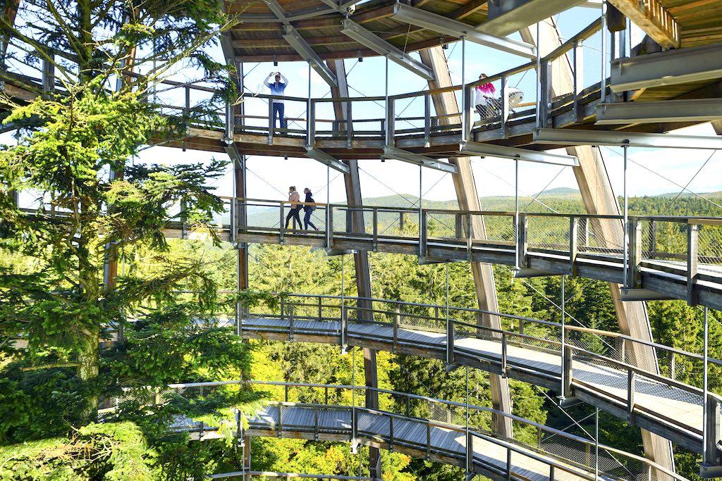 Nachhaltige Urlaub: Wandern auf dem Baumwipfelpfad in Neuschönau im Bayerischen Wald (Foto: DZT, Francesco Carovillano)