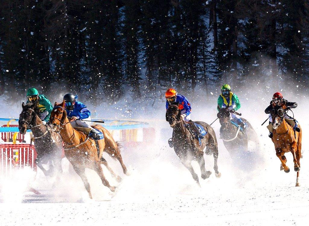 White Turf ist eine spannende Sportart im Winter